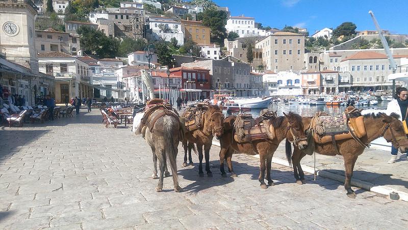 Photographie d'ânes dans le port d' Hydra