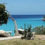 Exotisme, plages et cocotiers dans les Antilles Françaises !