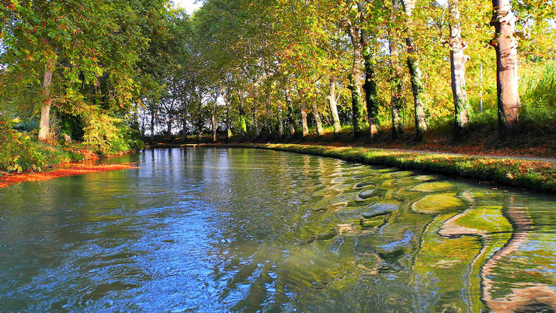 Que faire sur le canal du midi le blog filovent for Architecte canal du midi