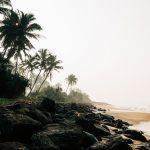 Le Sri Lanka : une île aux milles merveilles