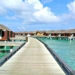 Le monde merveilleux des Maldives