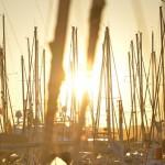 La location de bateaux à quai