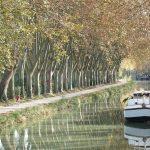 Location de bateaux sur le Canal du Midi – Camargue