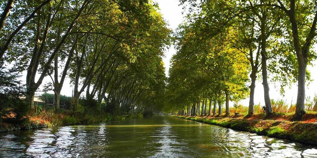 louer un bateau fluvial sur le canal du midi le blog filovent. Black Bedroom Furniture Sets. Home Design Ideas
