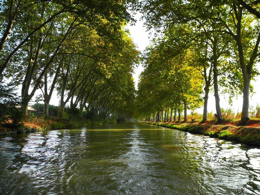 Photographie du Canal Du Midi