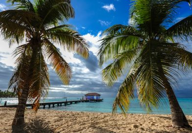 plage martinique