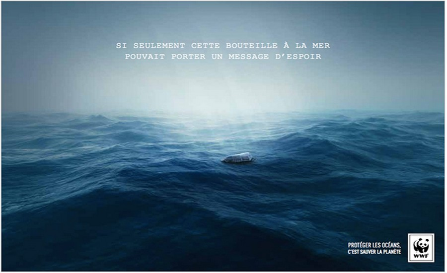 wwf CAMPAGNE
